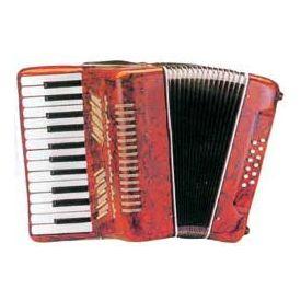Fisarmonica 12 bassi 25/12 tasti