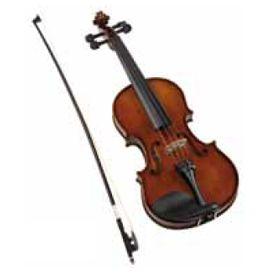 """Viola 16"""""""
