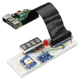Pi Cobbler assemblato + Cavo per Raspberry Pi B+/A+/Pi 2