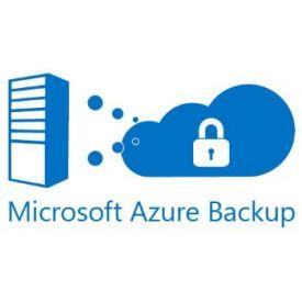 Microsoft Azure backup 256 GB - 1 anno