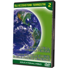 Gli ecosistemi terrestri 2